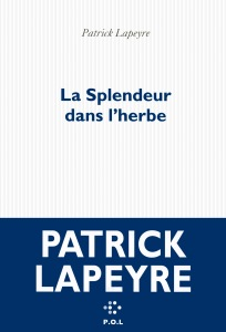 patrick-lapeyre-la-splendeur-dans-l-herbe